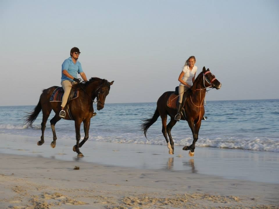 Juweira Boutique Hotel Salalah Horse Riding